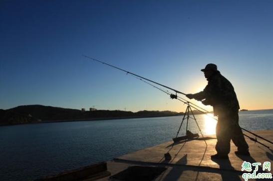 冬至钓鱼早上几点钓鱼好 冬至前后钓鱼钓多深的水3