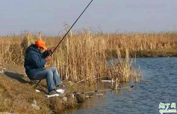 冬至钓鱼早上几点钓鱼好 冬至前后钓鱼钓多深的水2