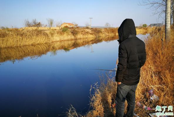 冬至钓鱼早上几点钓鱼好 冬至前后钓鱼钓多深的水1